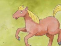 El Cavall Picafort