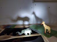 Experimentació: Llums, ombres i colors
